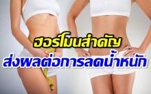 ฮอร์โมนสำคัญที่เกี่ยวข้องกับการลดน้ำหนัก